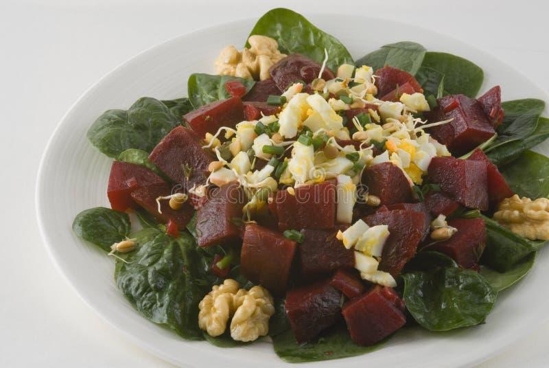 Salat mit roten Rüben, gekochtes Ei stockfotos
