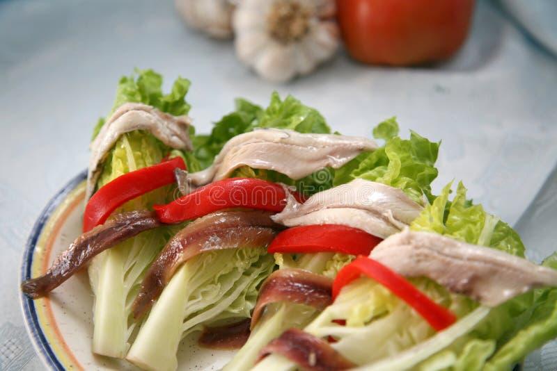 Salat mit Sardellen und Sardellen stockfotografie