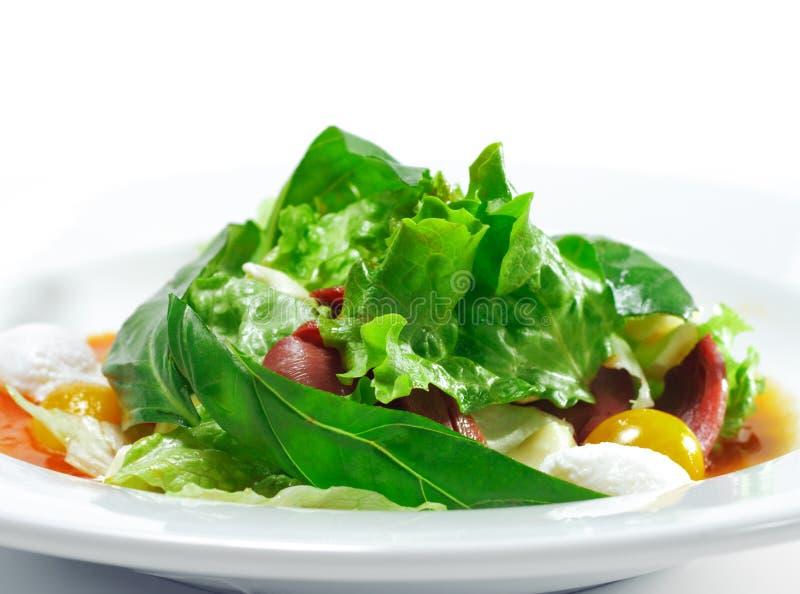 Download Salat Mit Smoke-cured Ente-Brust Stockbild - Bild von kalt, cuisine: 9086667