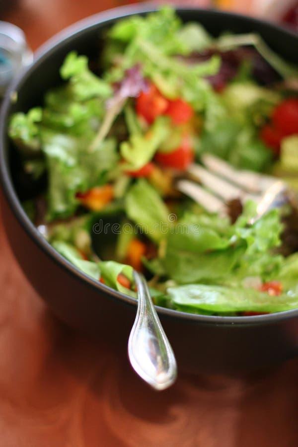 Salat-Schüssel stockfotografie