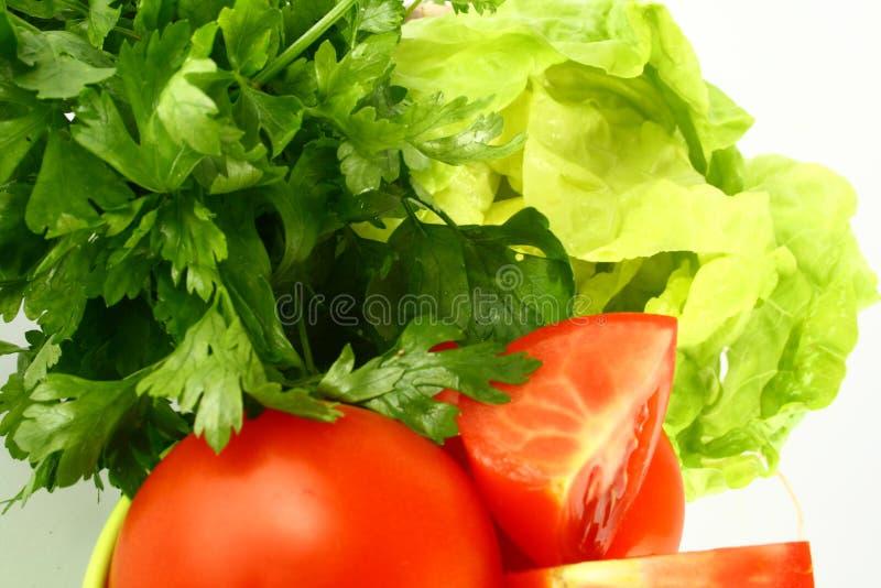 Salat tomato stock photography