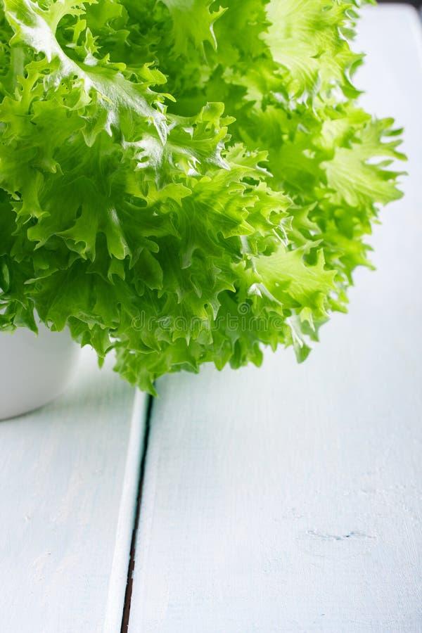 Salat verlässt Nahaufnahme lizenzfreie stockfotos