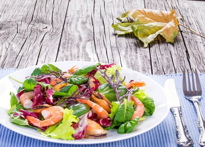 Salat von Garnelen, von Miesmuscheln und von Mischkopfsalat verlässt, Nahaufnahme stockfotografie