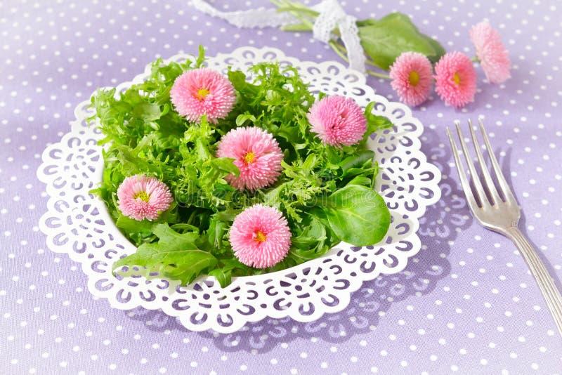 Salatgänseblümchen blüht Plattengabel stockfoto