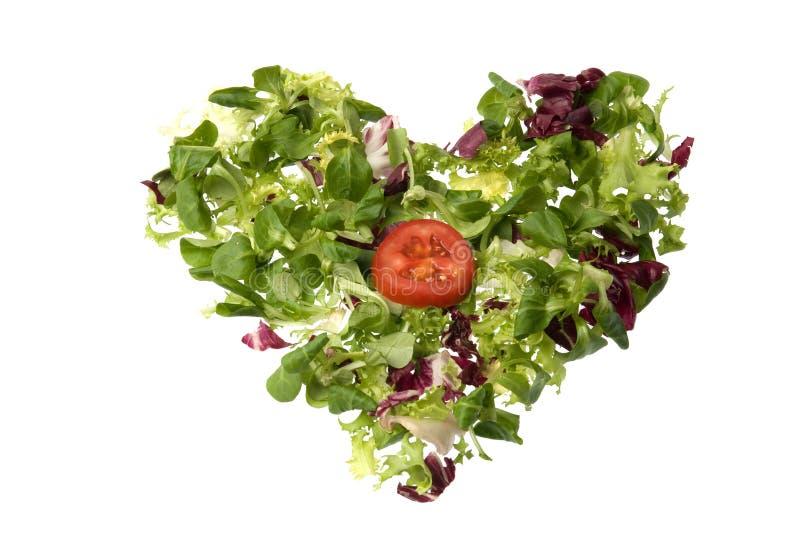 Salatinneres lizenzfreies stockbild