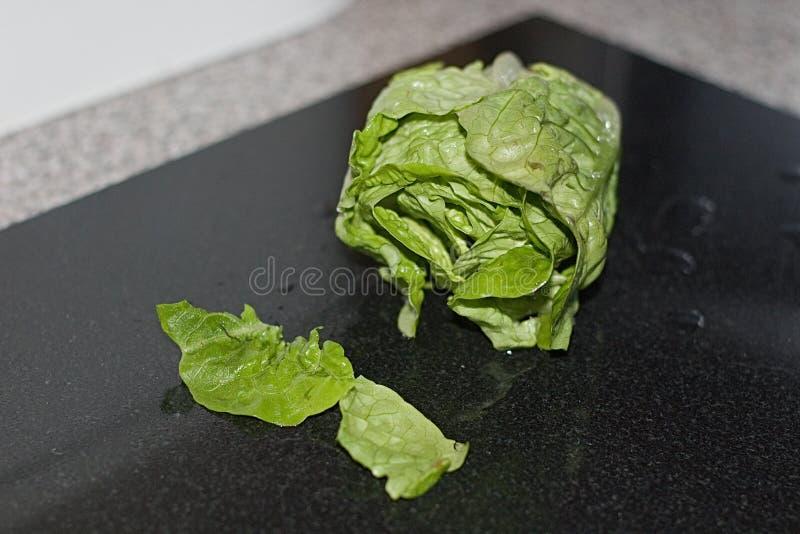 Salatsalat auf der Pappe gewaschen stockfoto
