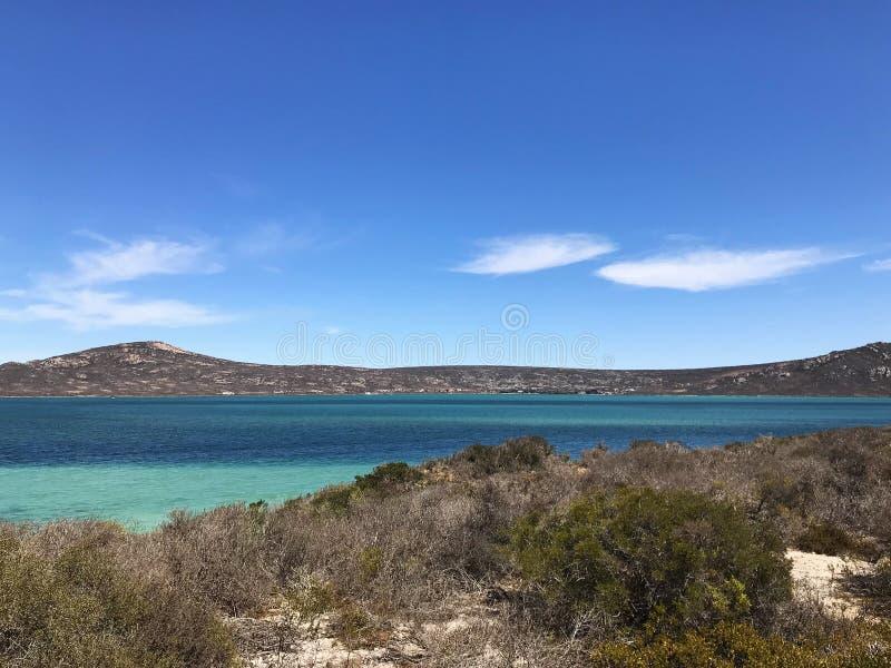 Saldanha海湾Langebaan西海岸国家公园南非 图库摄影