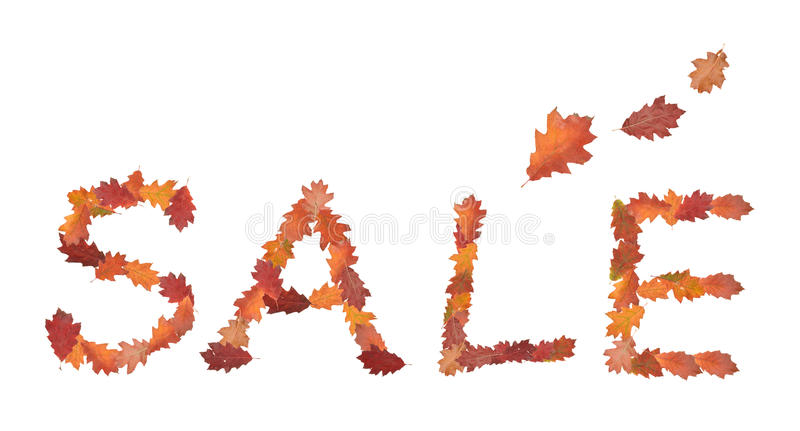 Download Sale stock image. Image of october, maple, autumn, macro - 12915931