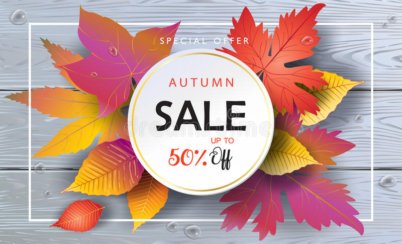 Download Sale Autumn Leaves Wooden Background Stock Vector - Illustration of fall, card: 97201945