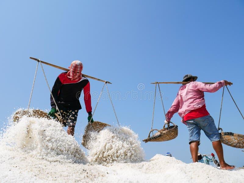 Sale a los trabajadores de campo que llevan la sal con el polo tradicional del hombro con las cestas durante cosecha de la sal imagen de archivo