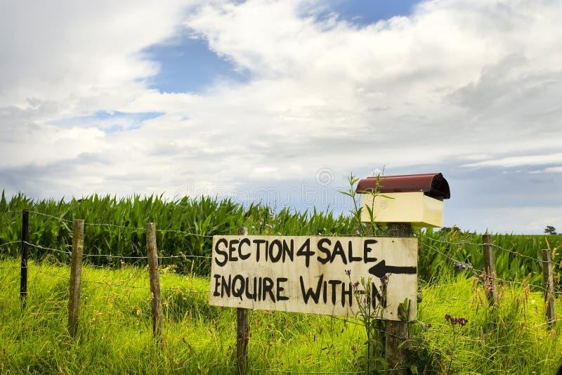 sale sign στοκ φωτογραφία με δικαίωμα ελεύθερης χρήσης