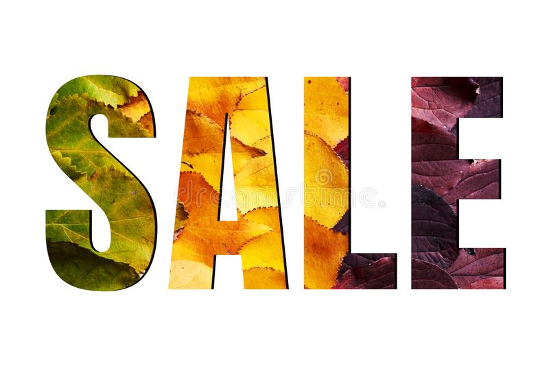 Sale sign isolated on white background, ads. Autumn sale banner with green, yellow and red leaves. Fall concept. Discount, percent, off, price, offer stock images