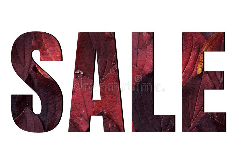 Sale sign isolated on white background, ads. Autumn sale banner with red leaves.  Fall concept. Discount, percent, off, price, offer, promotion, shop, text royalty free stock image