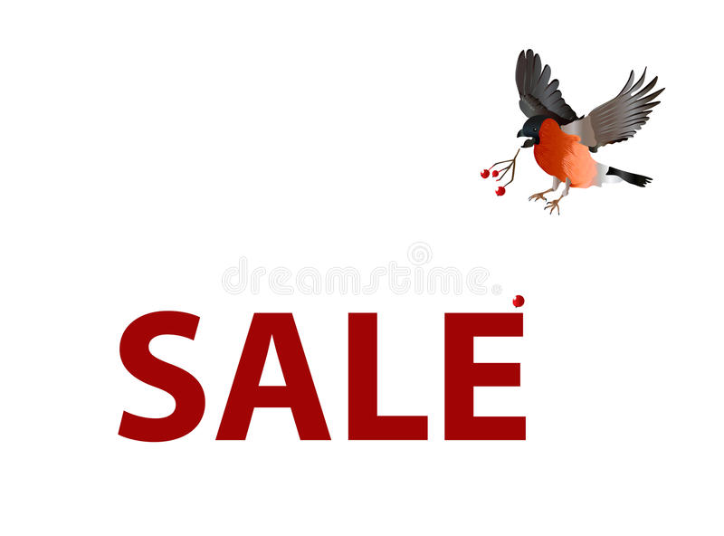 Sale vector banner. The bird loses its berries seeing the sale banner royalty free stock photography