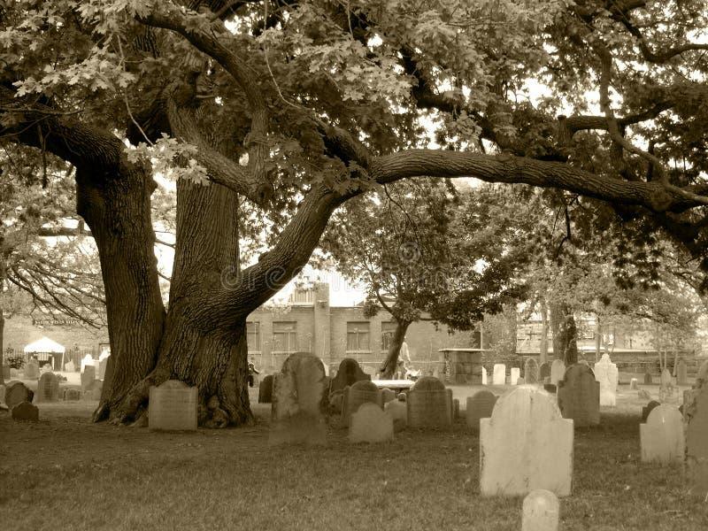 Salem Cemetery anziano, in monocolor di seppia fotografia stock libera da diritti