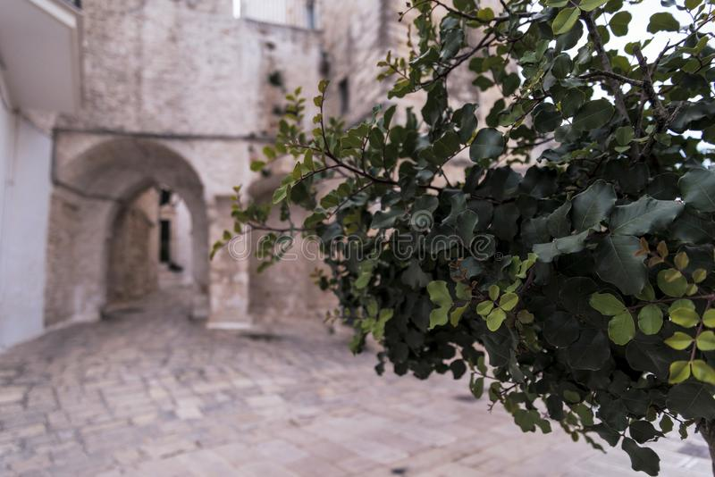 Little square in Ceglie Messapica, Salento, Italy royalty free stock images