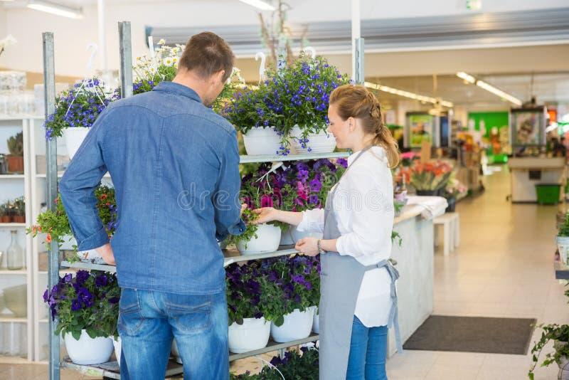 Salesgirl помогая клиенту в покупая заводах на стоковое фото rf