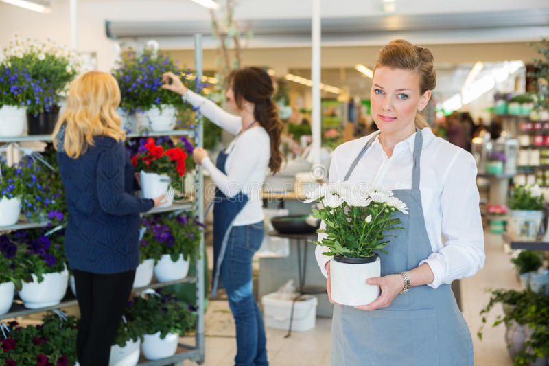 Salesgirl Holding Flower Pot In Florist Shop stock photography