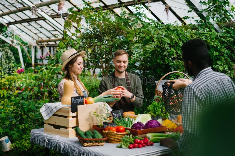 Salesman giving organic products to customers in greenhouse farm market royalty free stock image