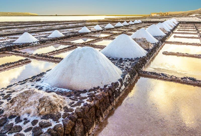Salgue a refinaria, salina de Janubio, Lanzarote, Espanha fotografia de stock royalty free