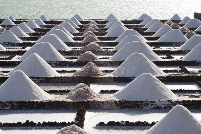 Sali i mucchi nelle saline de Janubio a Lanzarote immagine stock