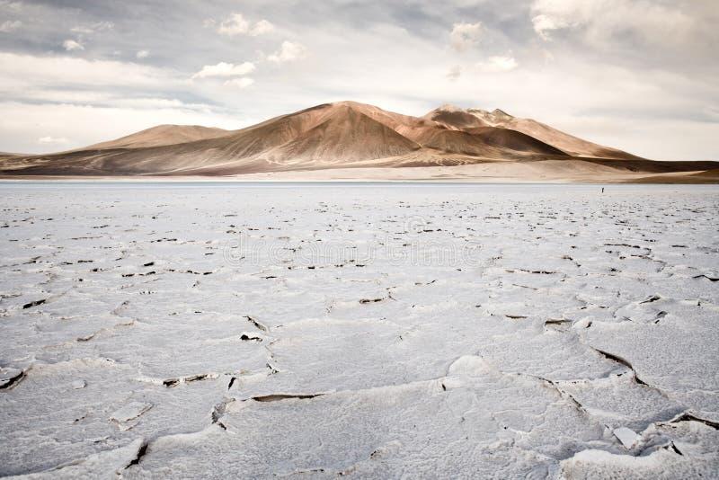 Sali la crosta nella riva della laguna e del lago di sale Tuyajto fotografie stock