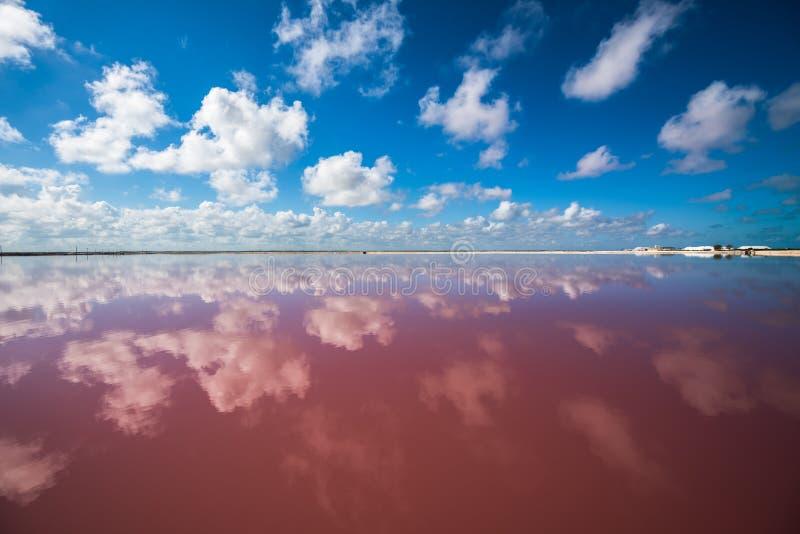 Sali la laguna rosa in Las Coloradas, Yucatan, Messico fotografia stock libera da diritti