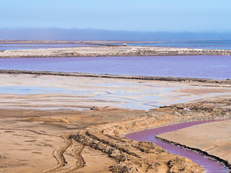 Sali le pentole nella baia di Walvis, Namibia, Africa fotografia stock