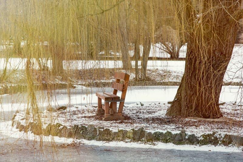 Salice piangente e banco di legno dal lago congelato fotografie stock