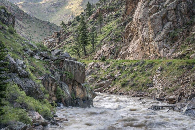 Salida de la primavera del río de Poudre en Colorado foto de archivo libre de regalías
