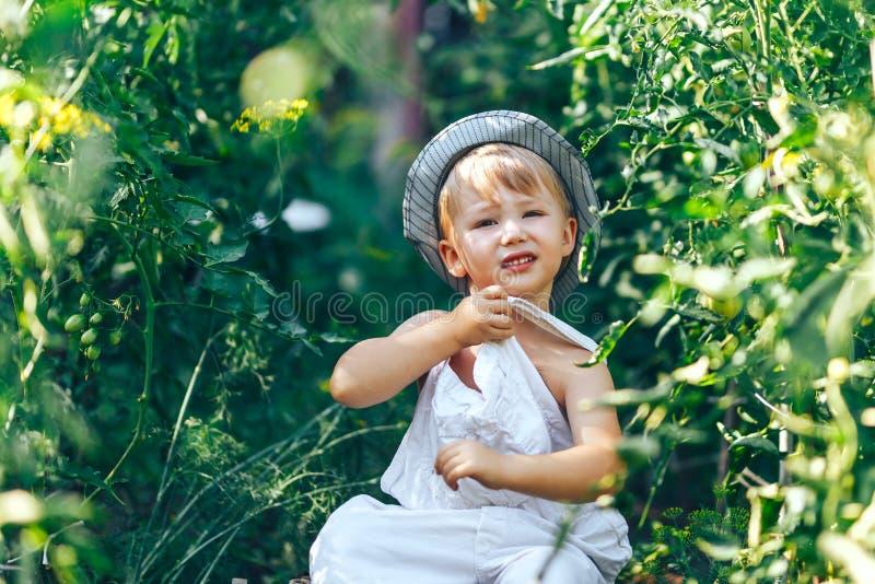 Salida de refrigeración casual en la hierba, muchacho del granjero tres años foto de archivo libre de regalías