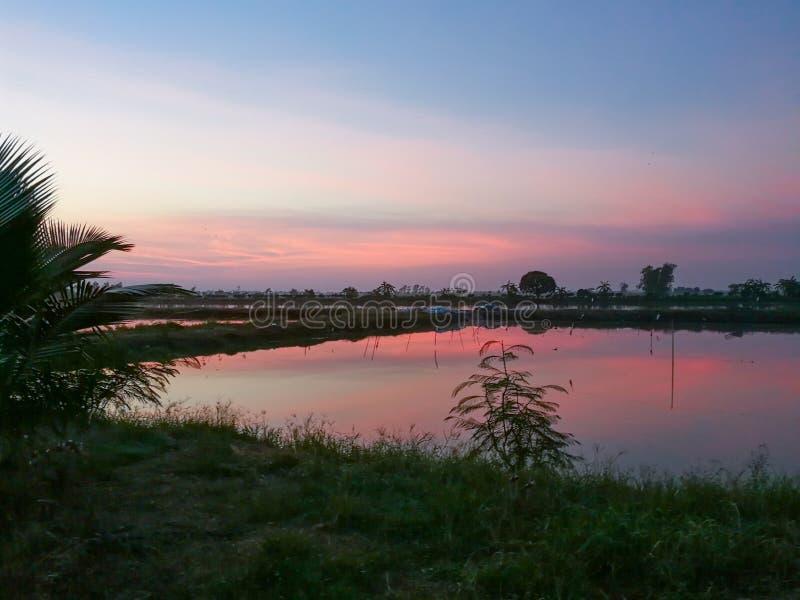 Salida del sol alrededor del halcón que mira en Nakornnayok, Tailandia imagen de archivo