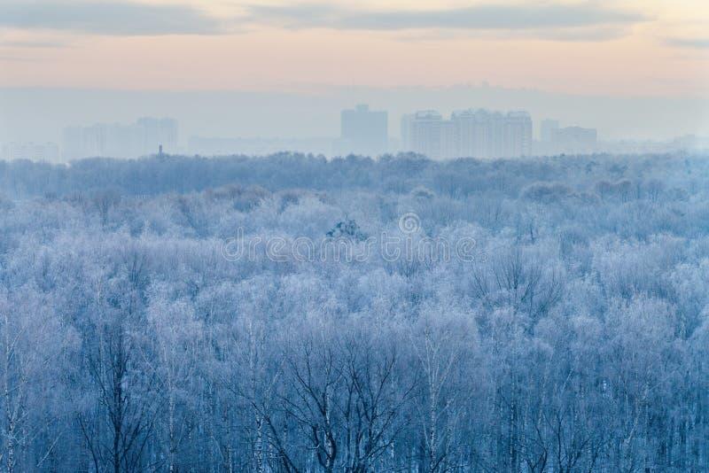 Salida Del Sol Azul En Wintermorning Muy Frío Foto de archivo