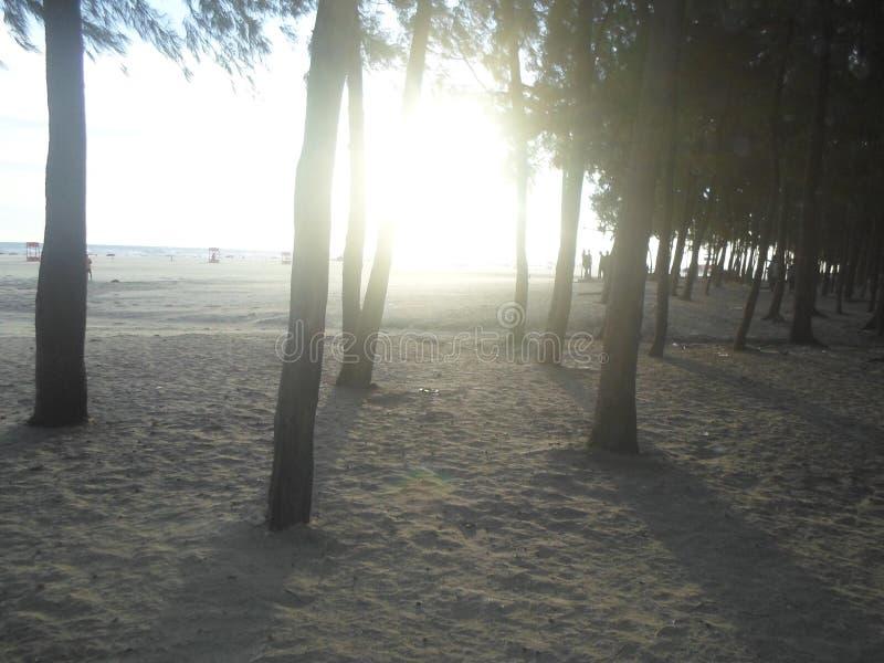 Salida del sol del bazar cox de la playa más grande del mar de los mundos foto de archivo