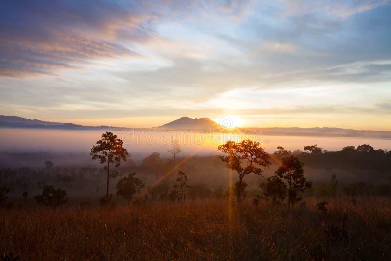 Download Salida Del Sol Brumosa De La Mañana En El Parque Nacional Phetch De Thung Salang Luang Foto de archivo - Imagen de verano, sunrise: 64213436