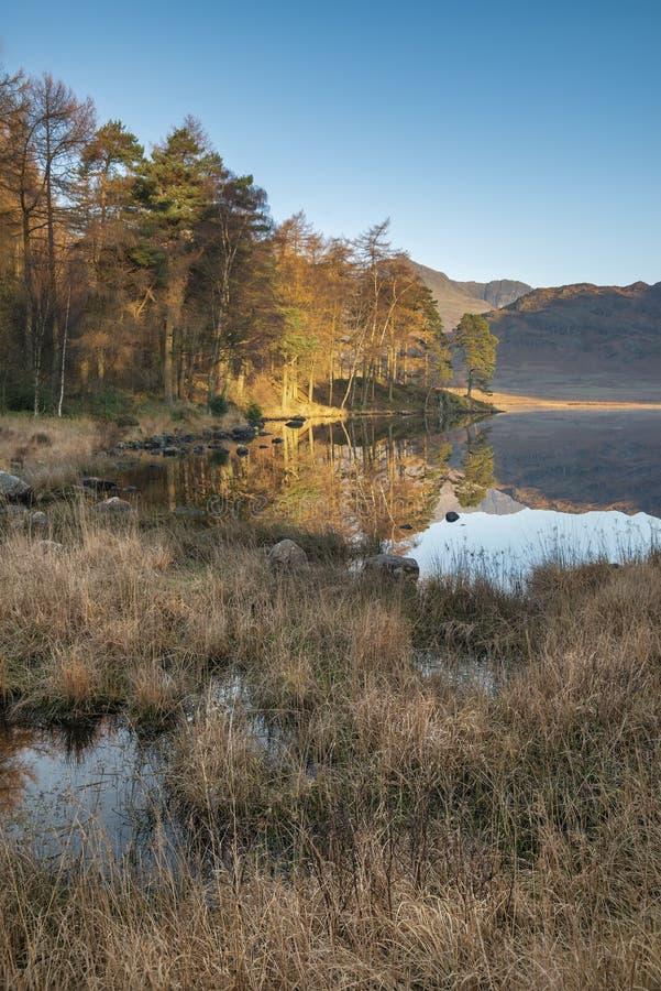 Salida del sol colorida hermosa de Autumn Fall sobre Blea el Tarn en el distrito del lago con alto aumento y el Langdales en la d fotos de archivo