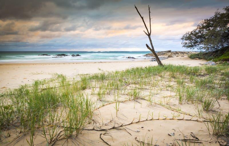 Salida del sol de la playa de Australia fotos de archivo libres de regalías