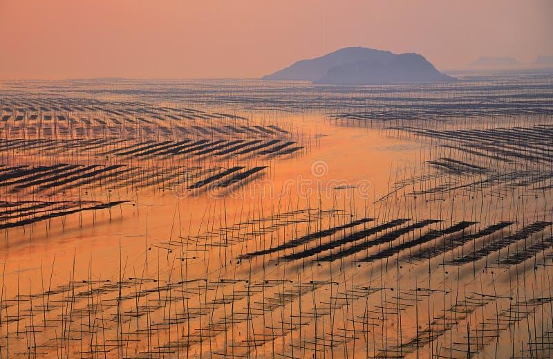 Salida del sol de la playa de Fujian Xiapu, China imágenes de archivo libres de regalías