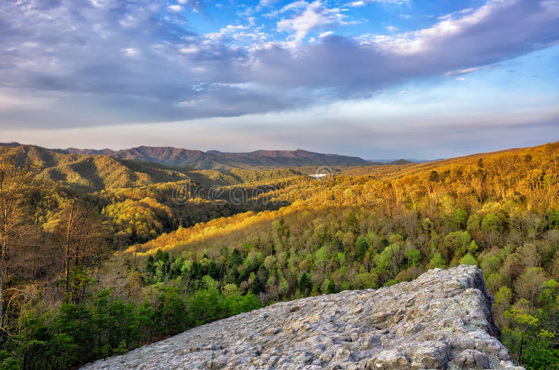 Salida del sol de la primavera, roca llena de protuberancias, bosque de Blanton, Kentucky fotos de archivo