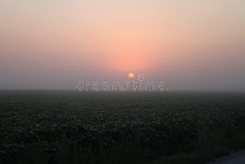 Salida del sol de las tierras de labrantío fotos de archivo libres de regalías
