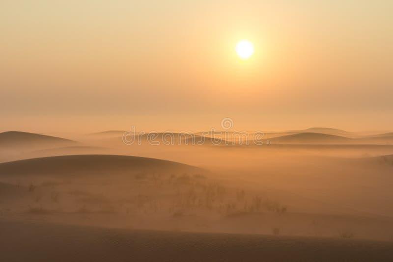 Salida del sol de niebla de la mañana del invierno en el desierto Dubai, UAE foto de archivo libre de regalías