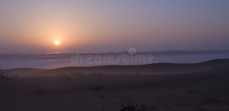 Salida del sol de niebla en las dunas del desierto foto de archivo