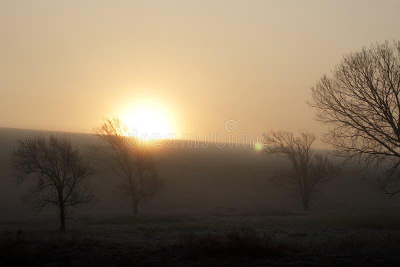 Salida del sol de niebla de la mañana del país imágenes de archivo libres de regalías