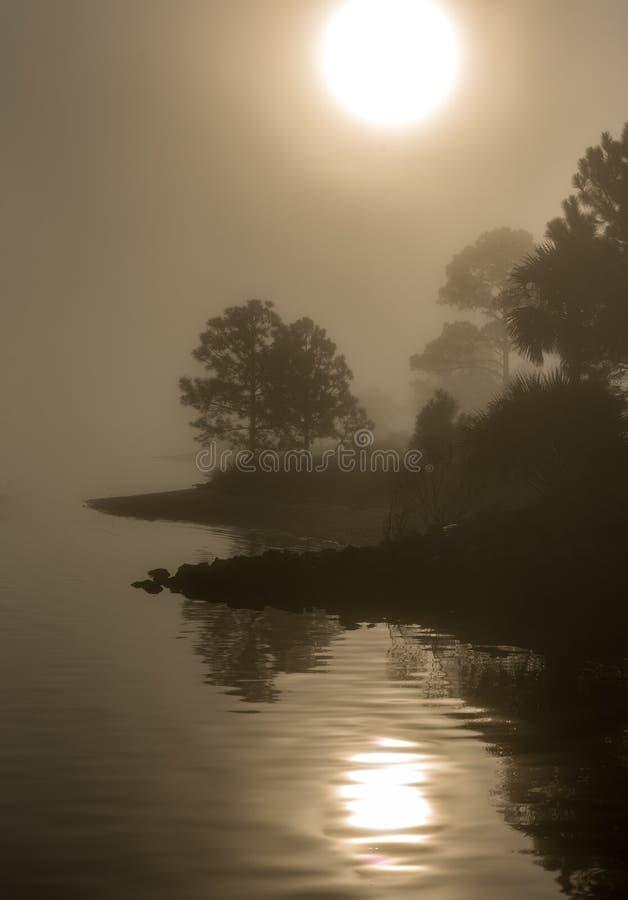 Salida del sol de niebla sobre la laguna imágenes de archivo libres de regalías