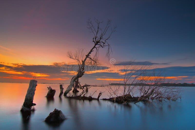 Salida del sol de Wonderfull en la playa del kecil del muara, tanggerang Indonesia imagenes de archivo