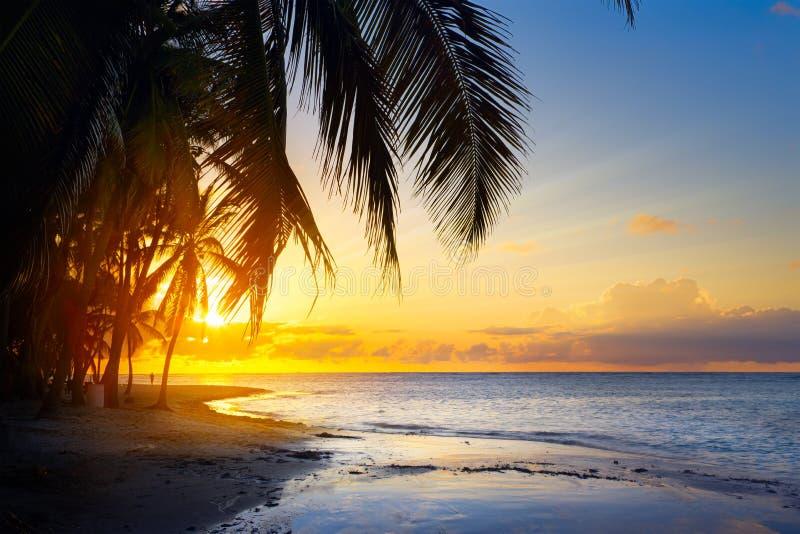 Salida del sol del arte sobre la playa tropical fotografía de archivo libre de regalías