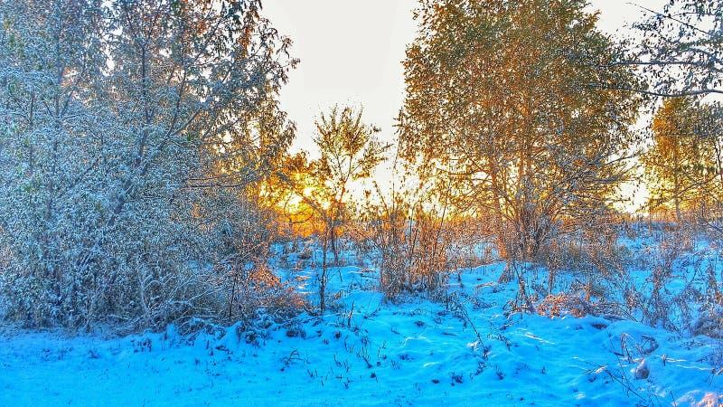 Salida del sol del invierno imagen de archivo libre de regalías