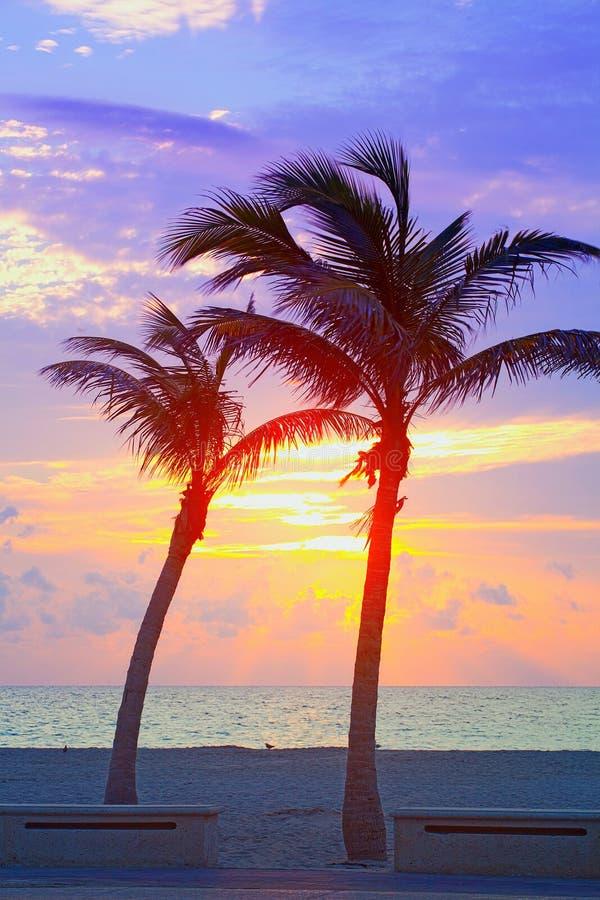 Salida del sol del verano de Miami Beach, de la Florida o puesta del sol colorida con las palmeras imagenes de archivo