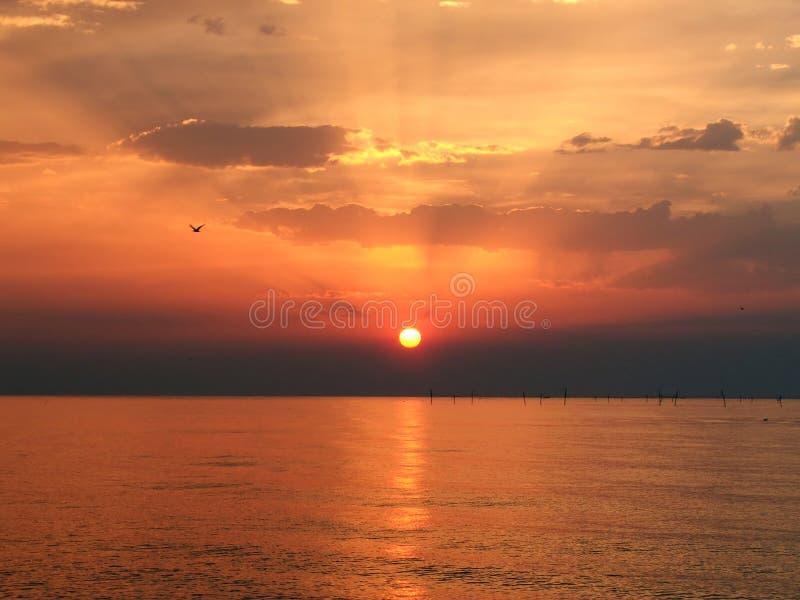 Download Salida Del Sol En El Cielo Clowdy Foto de archivo - Imagen de subida, nube: 177052