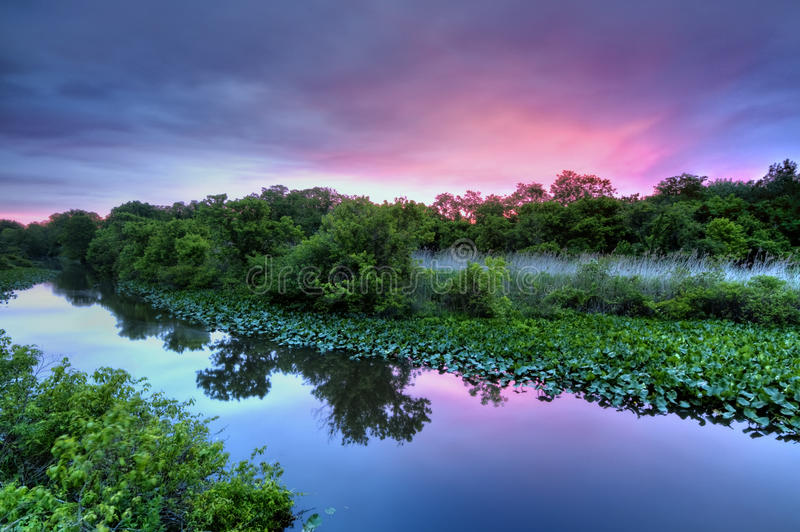 Salida del sol en el lago fotos de archivo libres de regalías